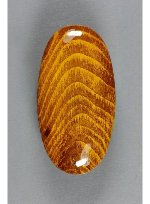 Dřevitý opál ze Slovenska