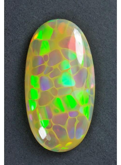 Drahý opál z Etiopie - Broadflash Neon