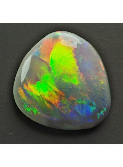 Drahý opál z Austrálie - Fish - 11x10mm